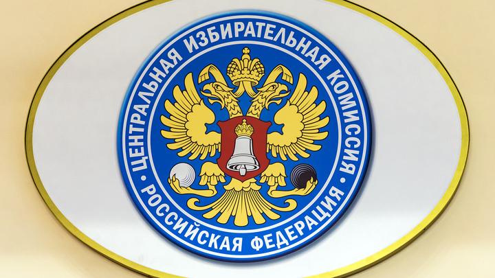 Во Владимирской области предварительно лидирует кандидат от ЛДПР