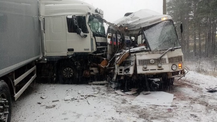 Первые жертвы снегопада: на занесенной трассе в Ленобласти фура протаранила автобус