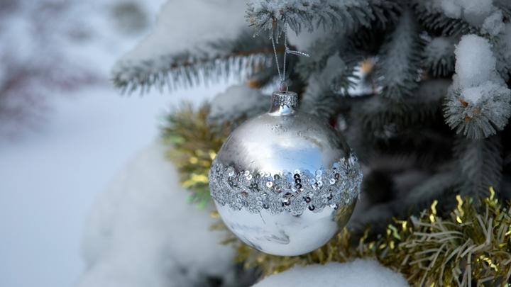 Погода на Новый год: Минус-то будет, а вот снег…