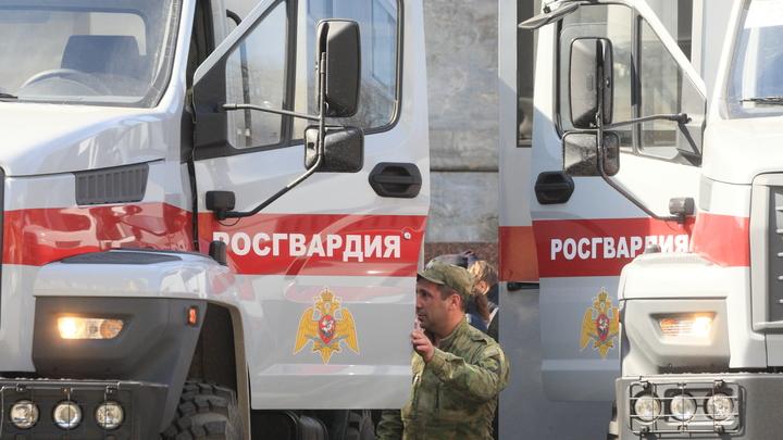 Уступи дорогу: Росгвардия предупредила о военных колоннах на трассах Подмосковья