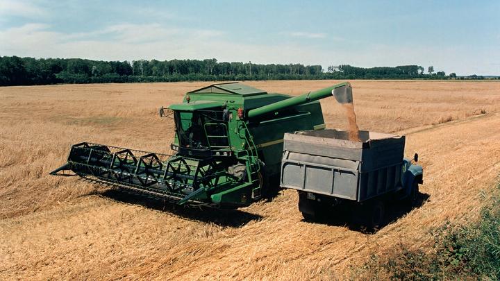 Урожай зерна во Владимирской области в 2021 году уменьшился на 78 тонн