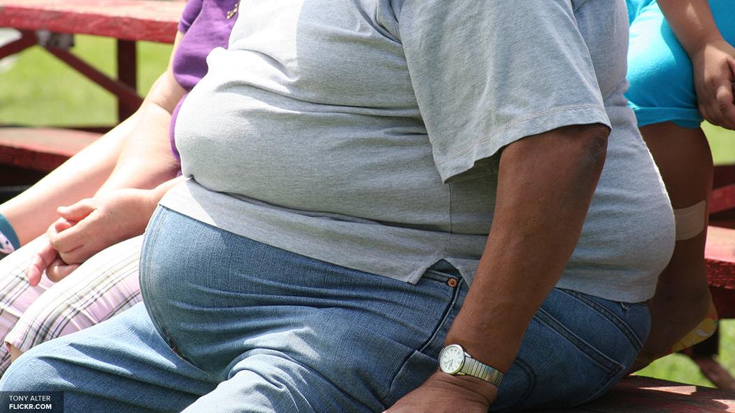 Генетическая склонность к ожирению легко излечима - ученые