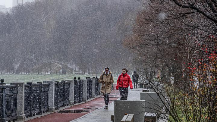 По крылом голубки: Синоптик пообещал Центральной России спасение от аномальных холодов