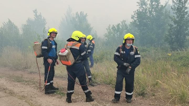 Ответит за сгоревший лес: в Тольятти активист пытается добиться посадки бывшего главы города