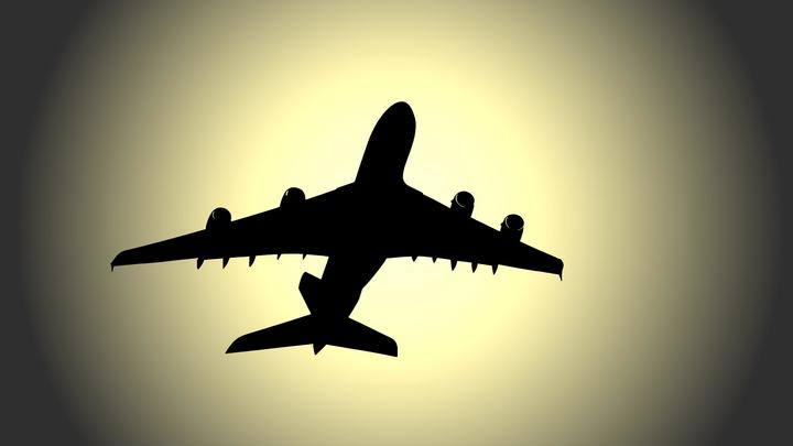 Все сплошь уважаемые люди: Экономист объяснил тост за аграрное лобби во время пьяной вечеринки чиновников на самолёте