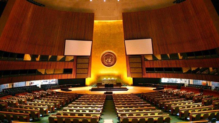Бенефис в ООН: президент Молдовы готовит речь для Генассамблеи