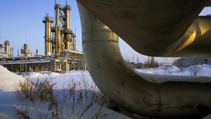 Как будто покупаем, но нет:Киев ворует российский газ - о схеме заявил соратник Зеленского