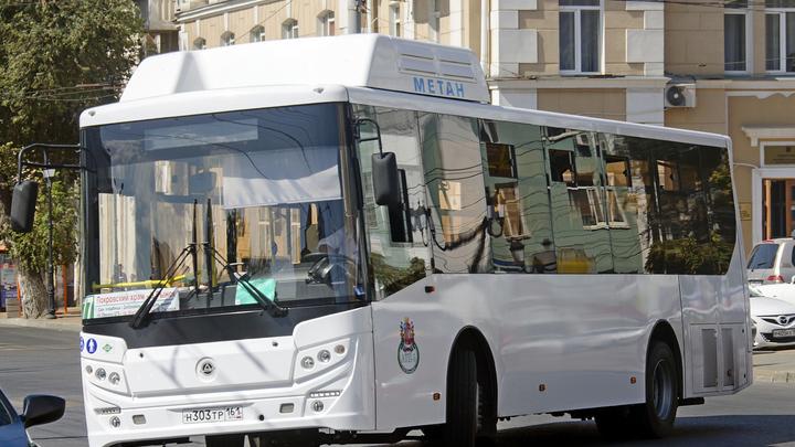 Команда ФАС: Ростовские транспортники проигнорировали антимонопольщиков и будут отвечать в суде