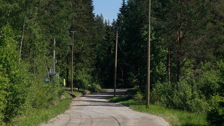 Мужчина изнасиловал 17-летнюю девушку в лесу под Новосибирском