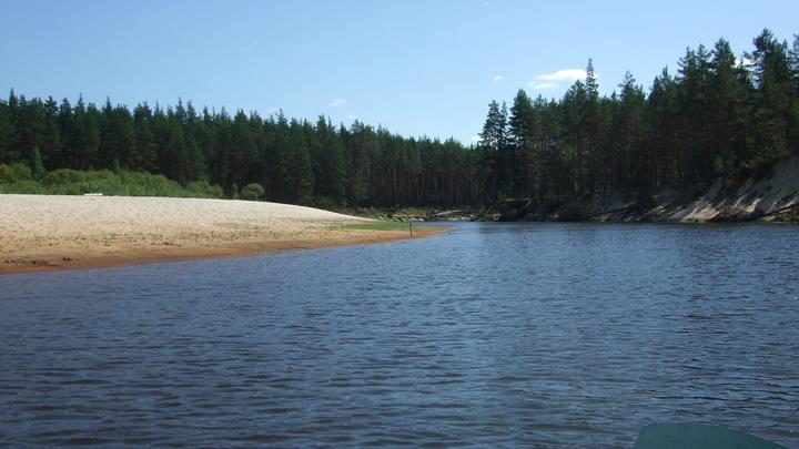 Владимирская область в списке регионов России с самыми грязными реками