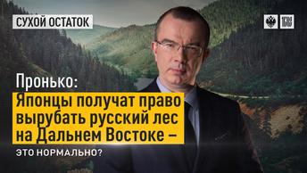 Пронько: Японцы получат право вырубать русский лес на Дальнем Востоке – это нормально?
