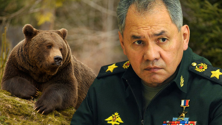 Шойгу о русском медведе в Ливии и удочерении США Прибалтики