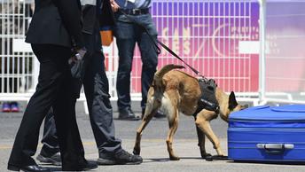 Китайский «сюрприз»: В аэропорту Рио-де-Жанейро нашли 100 килограммов героина