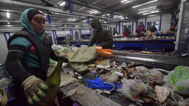В Ленобласти выделят землю под мусороперерабатывающие заводы