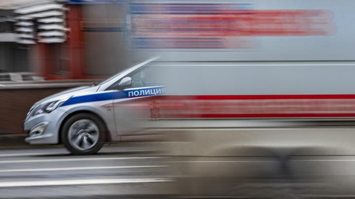 Неучтённые смерти: Умерших от COVID-19 в три раза больше, заявили авторы Новой газеты. Правда?