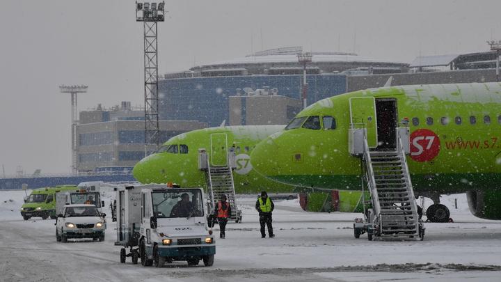 Биометрию - в аэропорты России: У плана Минтранса нашли одно слабое место