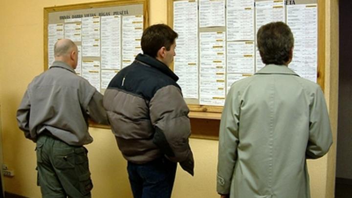 Людей и стабильность перебили деньги: Жители России назвали признаки работы мечты