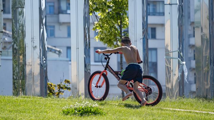 Похитители велосипедов: в Московской области массово угоняют двухколесный транспорт