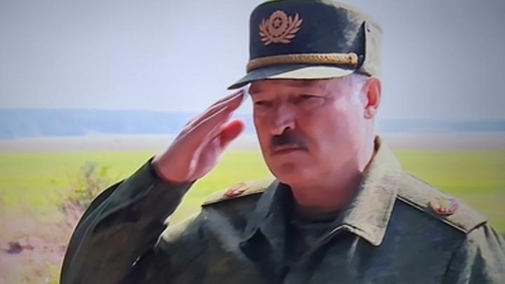 Выглядит решительно, но...: Пушков оценил Лукашенко с автоматом в резиденции президента