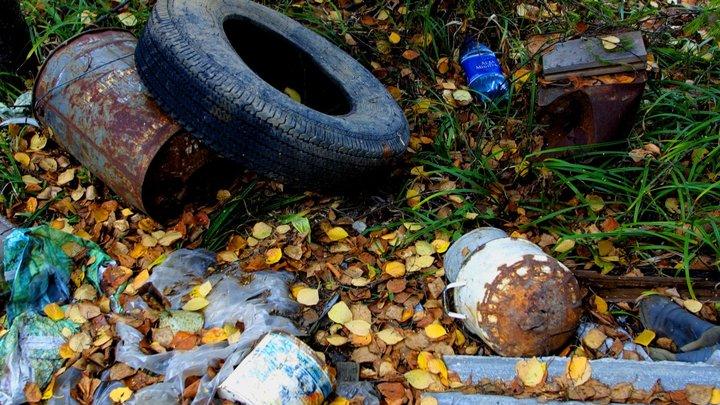 За свалку мусора в Домодедово компанию оштрафовали почти на полмиллиона рублей