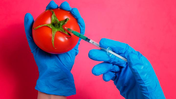 Синтетическая биология или натуральные продукты: Что мы знаем о «пищевом редактировании»