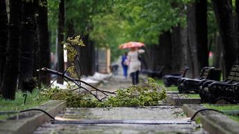 Ураган в Москве: как спастись от стихии