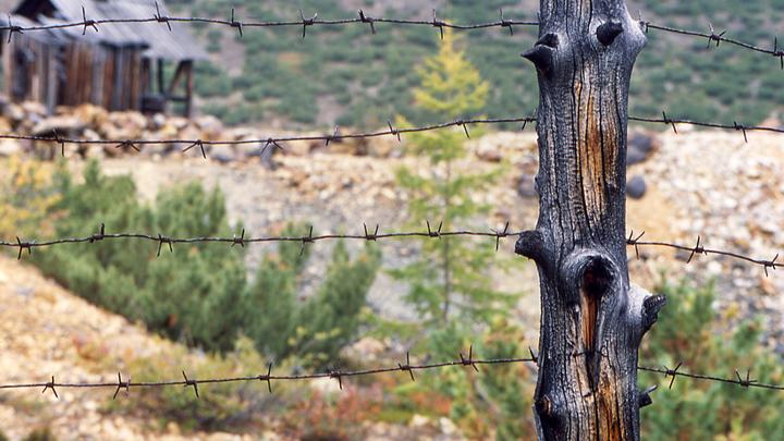 На Колыме ещё много работы: Для фейкометов и разжигателей Баранец предложил безальтернативное наказание