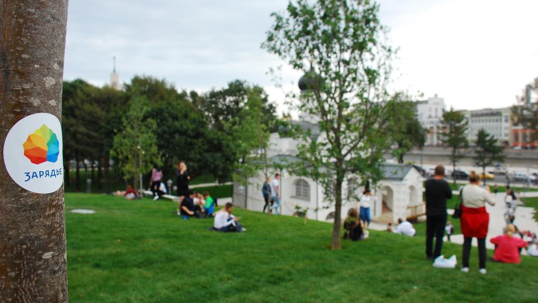 Сотрудники Зарядья через три дня после открытия приступили к восстановлению парка