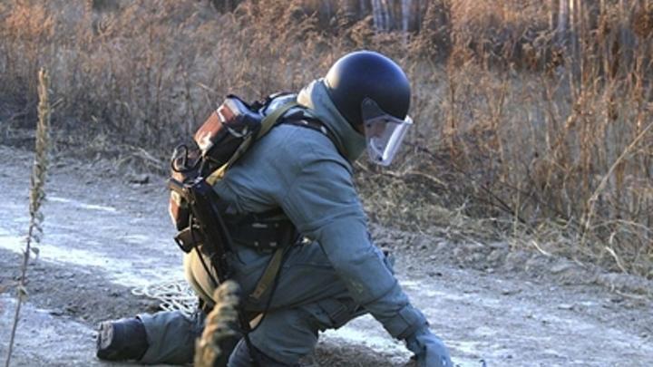 В Забайкалье обнаружили и обезвредили две ручных гранаты