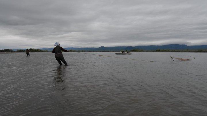 В природе таких пятен не бывает: Находка в камчатской реке озадачила учёных