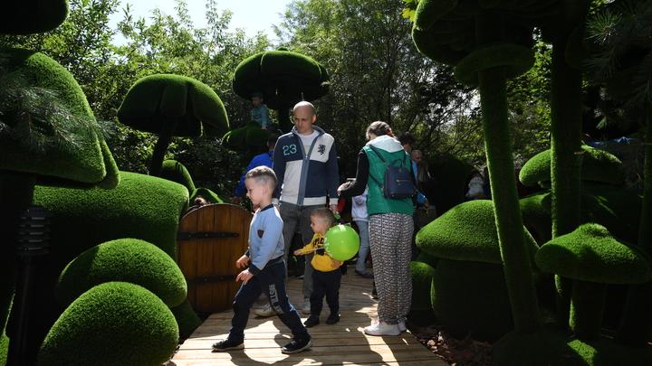 Рожать - 9 месяцев, а изымать за 24 часа: Жириновский оценил отозванный семейный закон