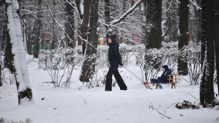 Метеорологи обещали москвичам апрель на Новый год