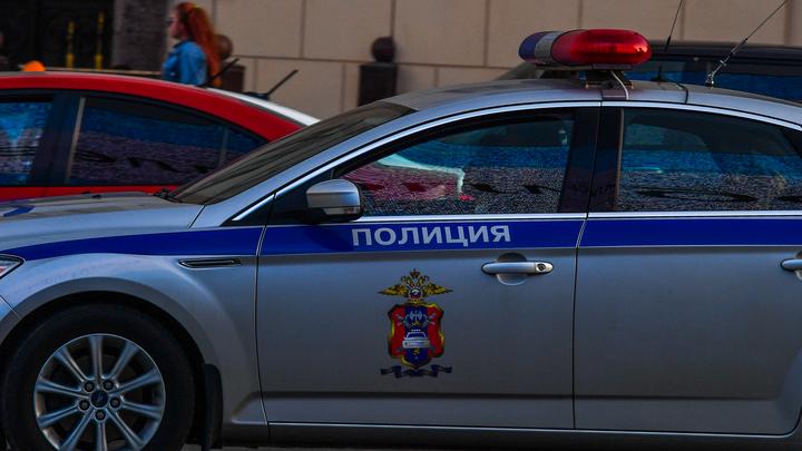 Отказалась налить: в Петербурге дебошира, жестоко избившего официантку кафе, задержала полиция