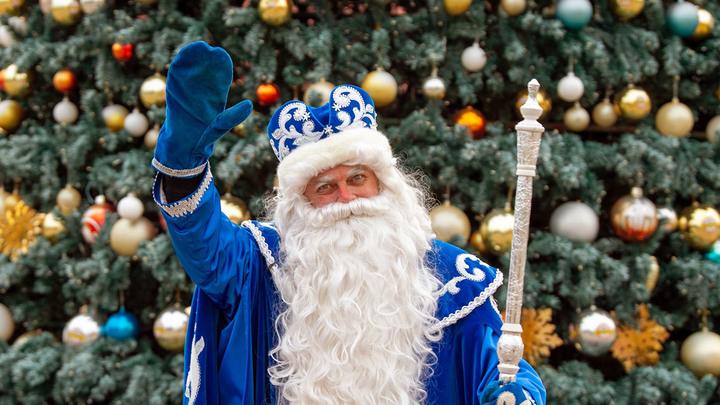 Ёлки запретили, но дело Деда Мороза живёт
