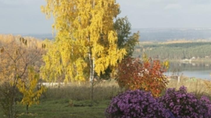 В Самарской области на выходные 11 и 12 сентября придёт бабье лето: потеплеет до плюс 19