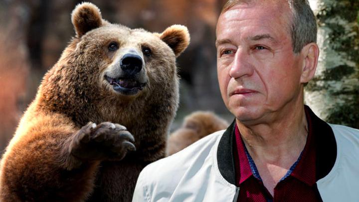 Губернатор Иркутской области Сергей Левченко накамеру расстрелял спящего вберлоге медведя
