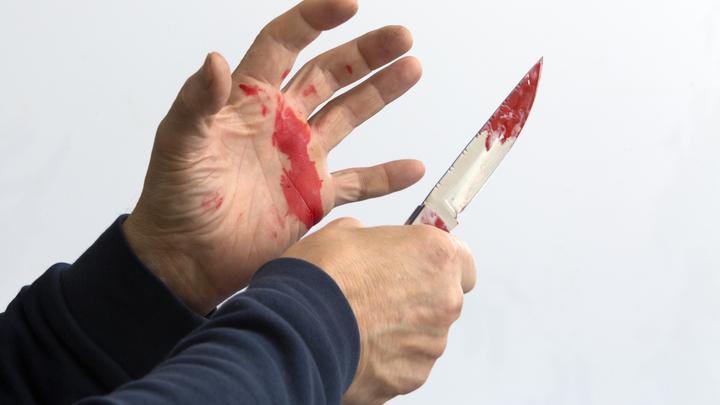 Во Владимирской области убийца три месяца прятал труп под полом террасы