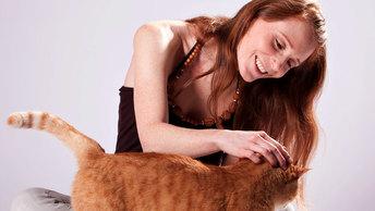 Для женщины важен не только кот