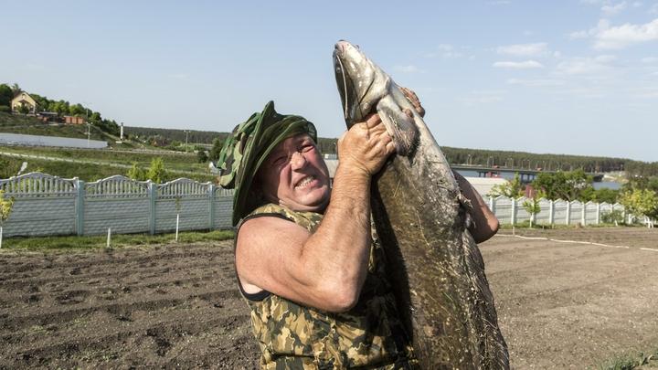 Не рыбалка, а мечта: Рыбакам дали лайфхак, как наловить на уху... бутылкой
