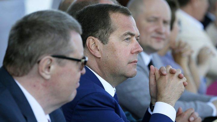 Пальцем наверх не показывать: Медведев напомнил губернаторам, кто должен заниматься лесными пожарами