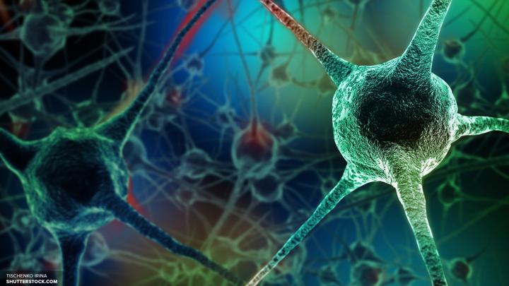 Ученые открыли безопасный метод обнаружения ВИЧ в мозге