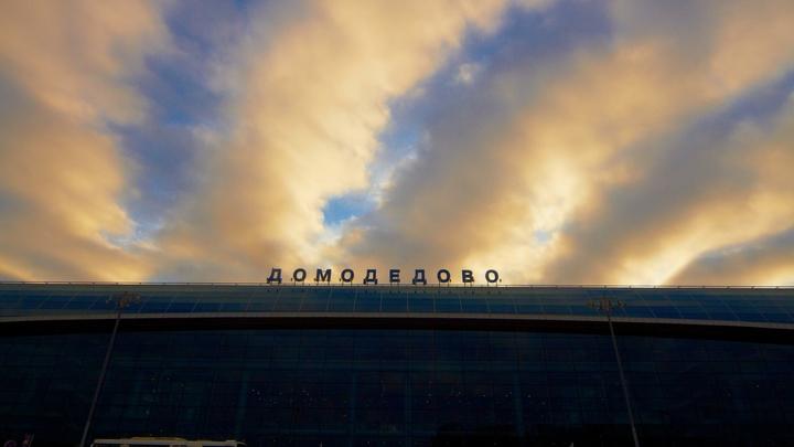 Домодедовским таможенникам-взяточникам дали от 4 до 7 лет