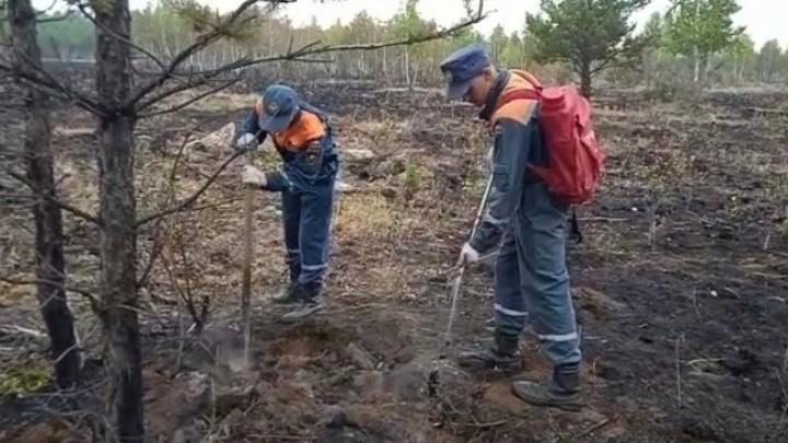 Пожары продолжаются: в Карталинском районе идет борьба за леса и поля