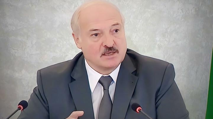 Молила-просила!: Лукашенко рассказал о частной беседе с Тихановской