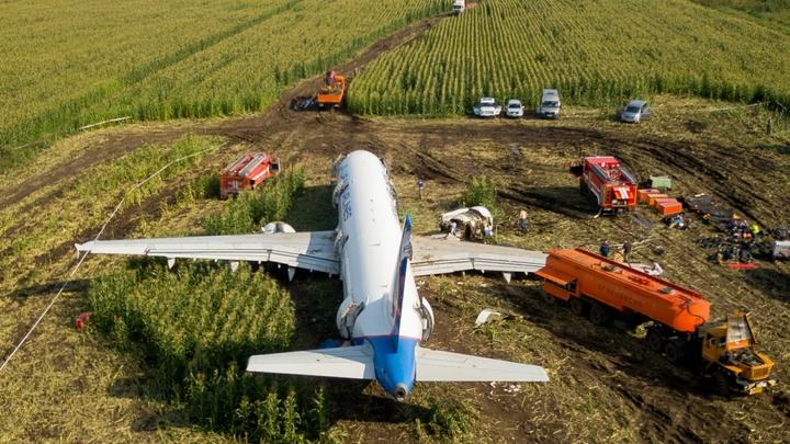 Пилоты врут, героями их не считаю: Лётчик-испытатель изучил чёрные ящики A321 и вызвал гнев коллег