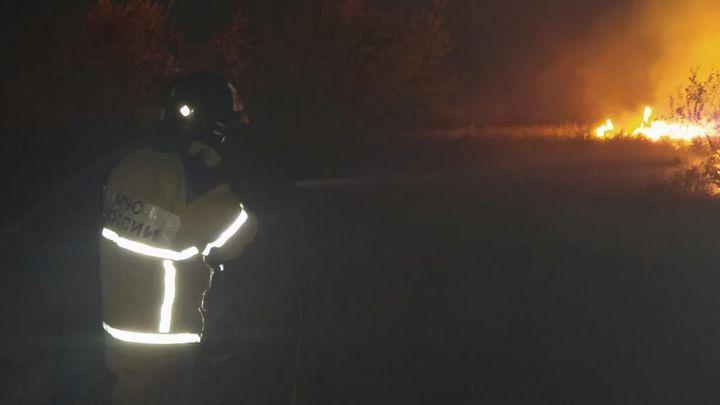 Более двухсот пожарных и спасателей тушат ландшафтный пожар под Ростовом-на-Дону