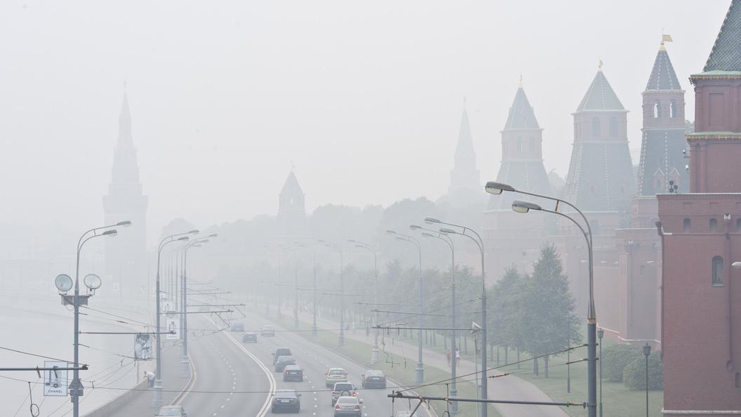 МЧС предупредило о тумане в Москве