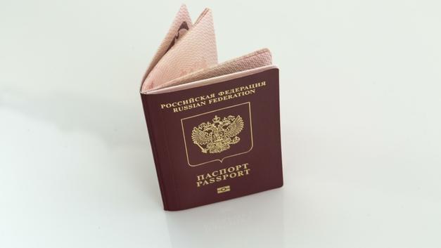 А я теперь тоже русский: Сын раненой Баракат по-детски обрадовался получению паспорта РФ