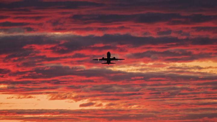 Сделка состоялась? Независимый эксперт объяснил молчание Голландии по расследованию MH17 и назвал покупателя