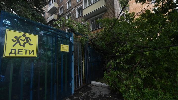 Свободный доступ на территорию школ и детсадов могут запретить в Нижегородской области